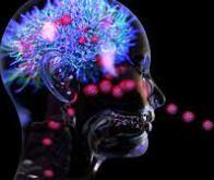 Le Covid-19 peut provoquer des lésions au cerveau, qui persistent bien après la guérison