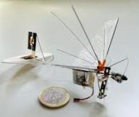 Le DelFly Explorer ouvre l'ère des micro-drones !