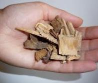 Le Japon mise sur la biomasse