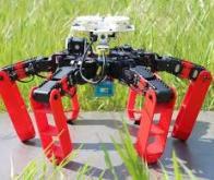 Le premier robot à pattes qui se déplace sans GPS