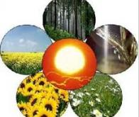 Le processus biochimique de décomposition de la biomasse végétale mieux compris