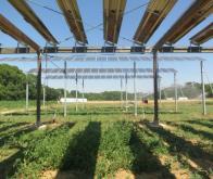Le projet Sun'Agri arrive dans sa phase de maturité