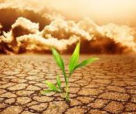 Le réchauffement climatique aura un impact sur la productivité du travail