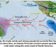 Le réchauffement climatique aurait un impact direct sur l'activité d'El Nino