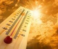 Le réchauffement des sols libérerait plus de CO2 que prévu