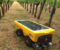 Le robot solaire Vitirover part à l'assaut du désherbage