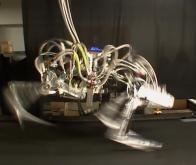Le robot sur pattes le plus rapide du monde !