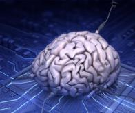 Le transcriptor, futur composant de l'ordinateur biologique ?