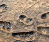 L'empreinte géologique de l'humanité est visible depuis 1950