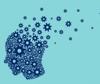 Les effets bénéfiques de l'exercice physique sur le cerveau mieux compris