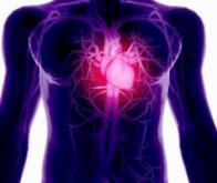 Les maladies cardio-vasculaires restent la première cause de décès au niveau mondial