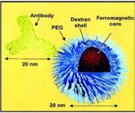 Les nanoparticules hybrides, prochaine arme contre le cancer ?