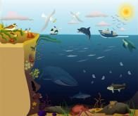 Les océans : 7ème richesse mondiale !