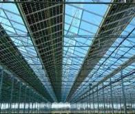 Les panneaux solaires semi-transparents alimentent les serres en énergie sans ralentir la ...