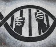 Les violences subies dans l'enfance s'inscrivent dans l'ADN