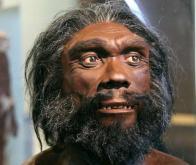 L'homme de Denisova, notre lointain cousin, était déjà présent au Tibet il y a 160 000 ans…