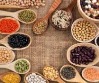 L'INRA veut favoriser par l'innovation la consommation de protéines végétales