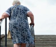 L'obésité fait le lit de la maladie d'Alzheimer