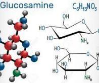 L'utilisation régulière de glucosamine réduit le risque de cancer du poumon