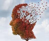 Maladie d'Alzheimer : La protéine qui protège contre la maladie