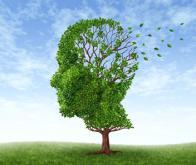 Maladie d'Alzheimer : une avancée majeure !