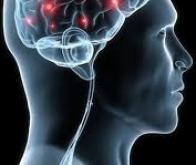 Même dans un coma profond, le cerveau continue à fonctionner !