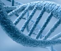 Microsoft mise sur l'ADN pour le stockage de données