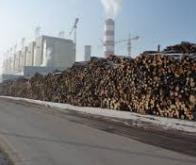 Mise en service de la plus grande centrale mondiale de biomasse