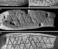 On savait déjà peindre il y a plus de 100.000 ans