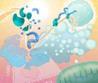 Personnaliser les thérapies anti-cancéreuses en déchiffrant le code énergétique des cellules…