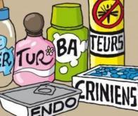 Des perturbateurs endocriniens dérèglent la thyroïde chez les fillettes