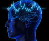 Prédire le déclin cognitif dans la maladie de Parkinson 10 ans après son apparition