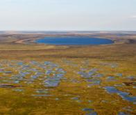 Réchauffement climatique : l'impact majeur des micro-organismes !
