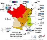 Regards croisés sur l'avenir des forêts françaises face au changement climatique