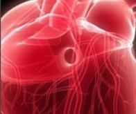 Régénération cardiaque : un nouveau pas en avant