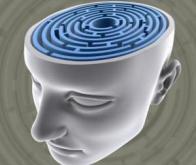 Schizophrénie : une signature anatomique grâce aux épines dendritiques
