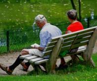 Seniors : c'est la quantité globale d'activités qui prime…