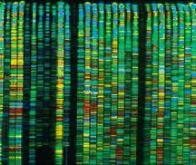 Séquencer les fragments d'ADN circulant pour diagnostiquer le cancer