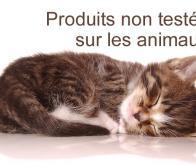 Tests de toxicité : vers une méthode de substitution à l'expérimentation animale