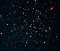 Traînardes bleues : des étoiles vampires
