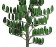 Un arbre à vent pour produire de l'électricité dans son jardin