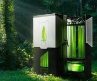 Un bioréacteur à algues pour capter le CO2