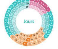 Un cycle menstruel irrégulier pourrait être un facteur de risque de mortalité prématurée