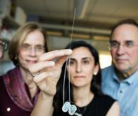 Un microsystème d'injection pour délivrer des médicaments dans le cerveau