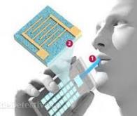 Un nez électronique pour le dépister le cancer de l'estomac