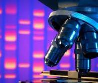 Un nouveau gène de prédisposition au cancer identifié