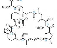 Un nouveau mécanisme moléculaire contre le cancer
