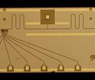 Un nouveau pas vers l'ordinateur quantique