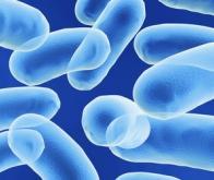 Un nouveau test pour détecter des infections à risque