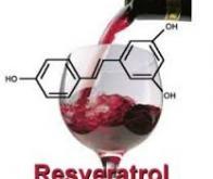 Un peu de vin rouge pour un cerveau en pleine forme !